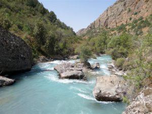 Aksu Jabagly natuurreservaat, Kazachstan
